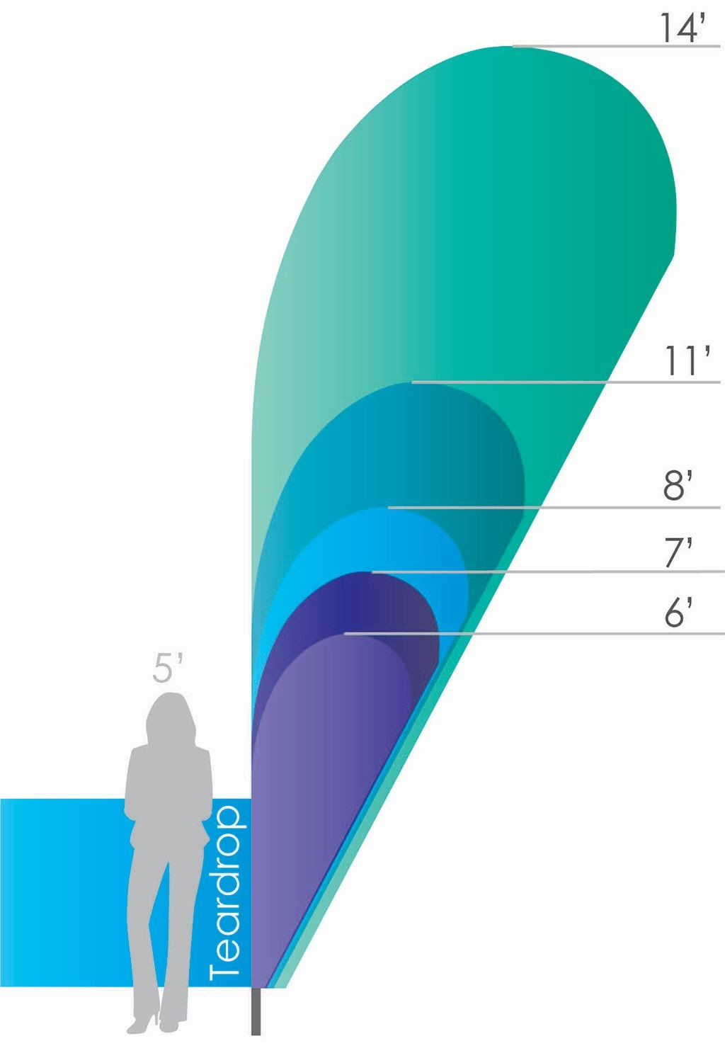 Custom Feather Banners Size Chart for All Sizes